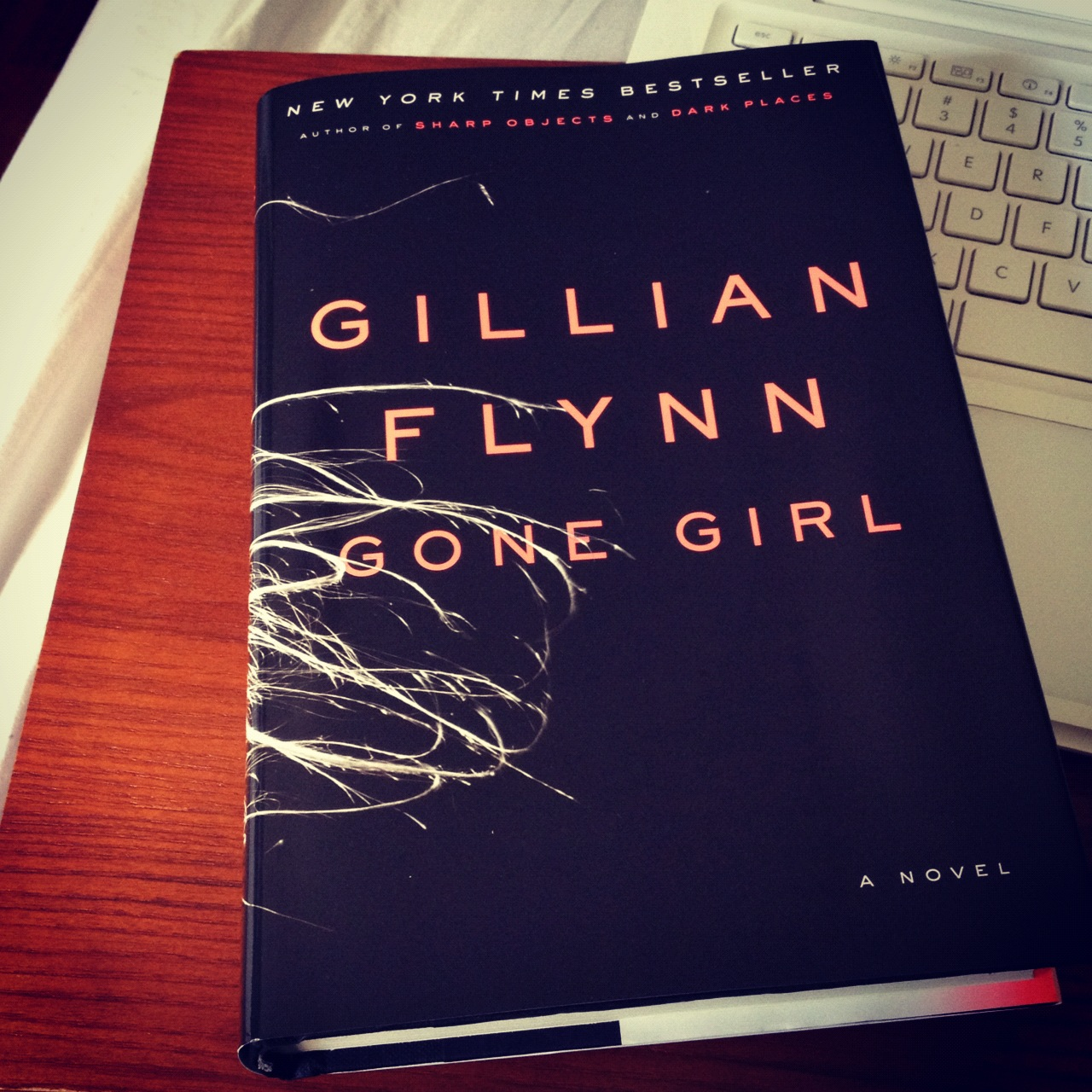 gone girl by gillian flynn Gone girl is film adaption of the novel by the same name by gillian flynn directed by david fincher, the film was released to theaters october 3rd, 2014 and debuted on dvd on january 13th, 2015.